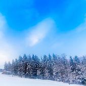 Swiss winter season landscape — Stock Photo