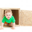 Little boy inside a box on a white background — Stock Photo #28300569