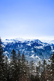 Swiss winter season landscape. — Stock Photo