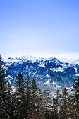 Paisaje de temporada invierno suizo. — Foto de Stock