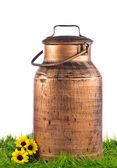 Milk can on green grass. retro milk container — Stock Photo