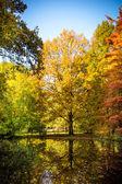 Beautiful autumn — Stockfoto