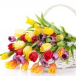 Basket of Tulips isolated on white background. Bouquet of tuli — Stock Photo #30235687