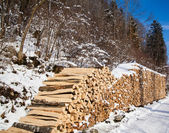 Pila de leña. nevado leña en el bosque de invierno — Foto de Stock
