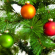 Christmas decorations. Christmas ball and green spruce branch — Stock Photo #32210599