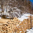 Firewood stacked in winter. — Stock Photo #32315245