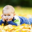 Little boy laying on yellow leaves — Stock Photo #32929849