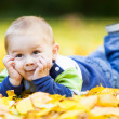 Little boy laying on yellow leaves — Stock Photo #32929875
