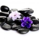 Spa stones, zen pebbles. — Stock Photo #32930419