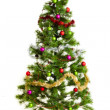 Christmas tree isolated. — Stock Photo #33093803