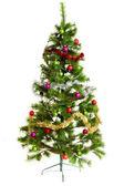 Christmas tree isolated. — Stock Photo