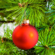 Decoration on christmas tree — Stock Photo #33381083