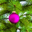 Decoration on christmas tree — Stock Photo