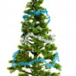 Christmas tree isolated. — Stock Photo #33649115