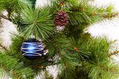 Christmas decorations hanging on christmas tree — Stock Photo