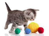 Kitten with balls of threads. — Stock Photo