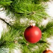 Christmas decorations hanging on christmas tree — Stock Photo #34227429