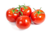 Closeup of tomatoes on the vine isolated on white. — Stock Photo