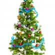 Christmas tree isolated on white — Stock Photo