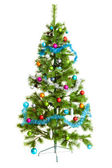 Christmas tree isolated on white — Photo