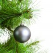 Christmas ball and fir tree — Stock Photo #34914987