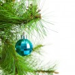 Christmas ball and fir tree — Stock Photo #35282103