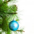 Christmas ball and fir tree — Stock Photo #35282159