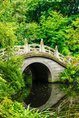 Beautiful Japanese garden — Stock Photo