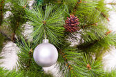 Christmas decorations hanging on christmas tree — Stock Photo