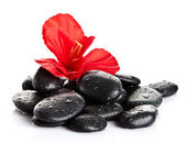 Zen pebbles. background of a spa with stones — Stock Photo