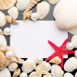 Sea shell and white card on black background. — Stock Photo #35412095