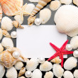 Sea shell and white card on black background. — Stock Photo #35412165