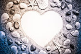 Heart made with shells — Stock Photo