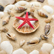 Beach with starfish and seashells — Stock Photo