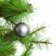 Christmas ball and fir tree — Stock Photo