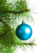 Christmas ball and fir tree — Stock Photo #35451959