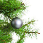 Christmas ball and fir tree — Stock Photo
