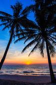 Prachtige tropische zonsondergang met palmbomen. tropisch strand. Palm — Stockfoto