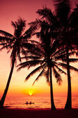 Palm trees silhouette on sunset tropical beach. Tropical sunset — Foto Stock