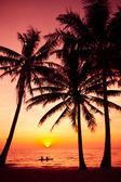 Palm trees silhouette on sunset tropical beach. Tropical sunset — ストック写真