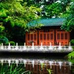 ogrod japoński — Zdjęcie stockowe #38216899