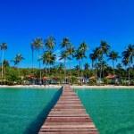 Tropical Resort — Stock Photo #38220845