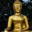Buddha — Stock Photo #38268823