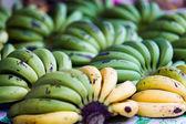Green and yellow bananas fruits — Stock Photo