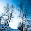 Foto Stock: Beautiful winter landscape