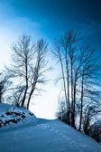Beautiful winter landscape — ストック写真