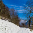 Snowy winter road — Stock Photo #39605201