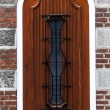 House door — Stock Photo #39734493