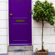 Stock Photo: House door
