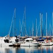 White yachts on anchor in harbor — Stock Photo #40700107